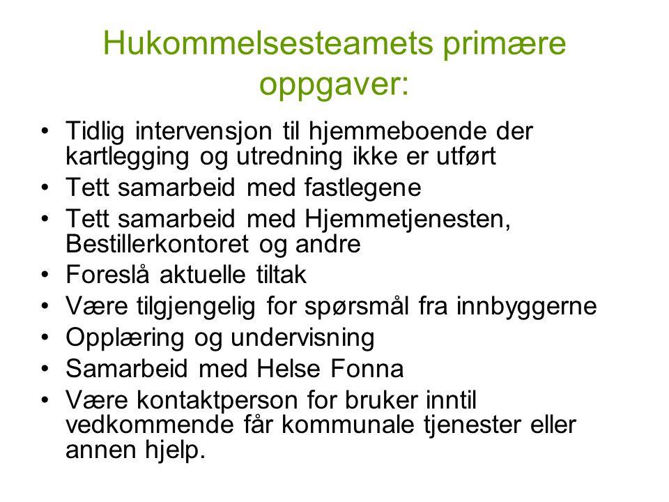 Hukommelsesteamets primære oppgaver: