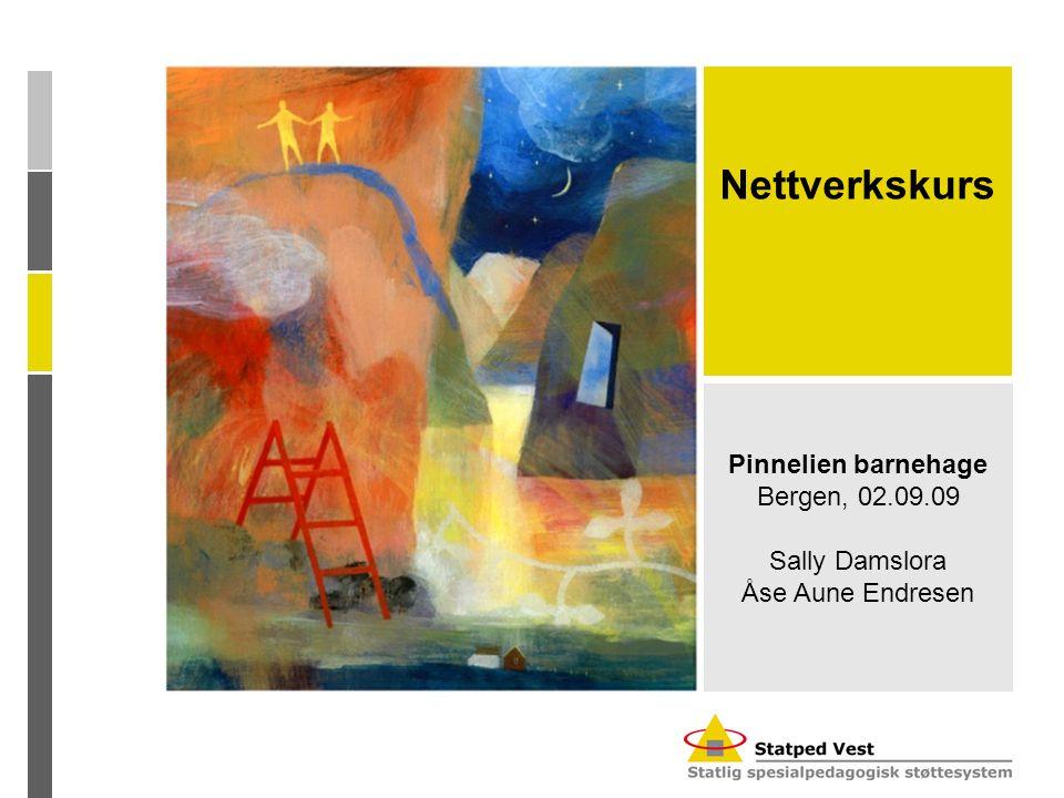 Nettverkskurs Pinnelien barnehage Bergen, 02.09.09 Sally Damslora