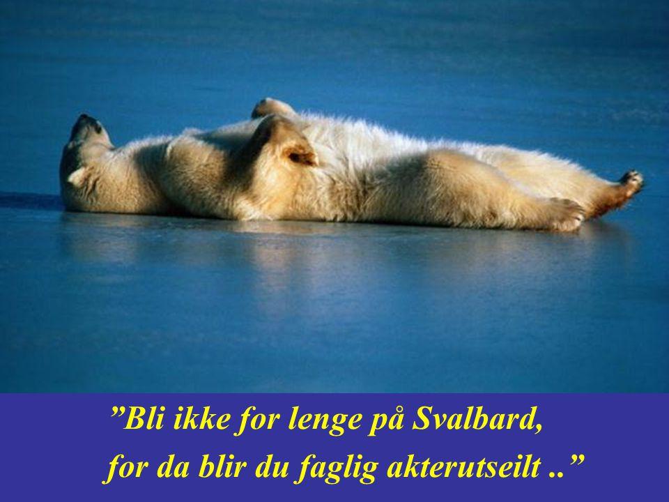 Bli ikke for lenge på Svalbard,