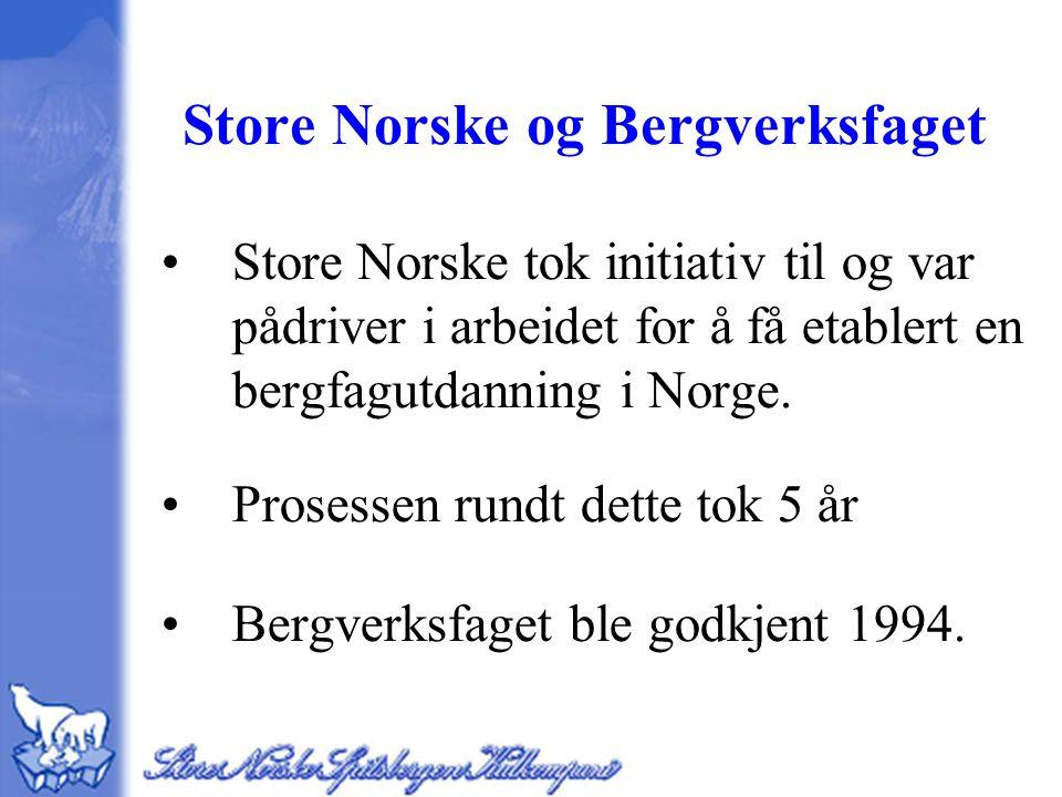 Store Norske og Bergverksfaget