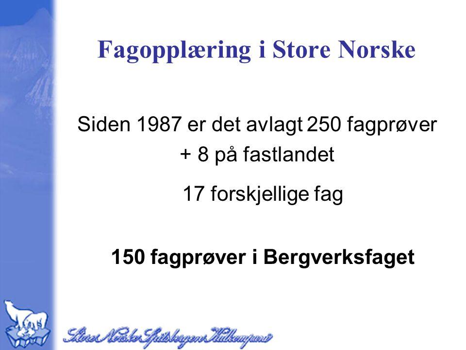 Fagopplæring i Store Norske