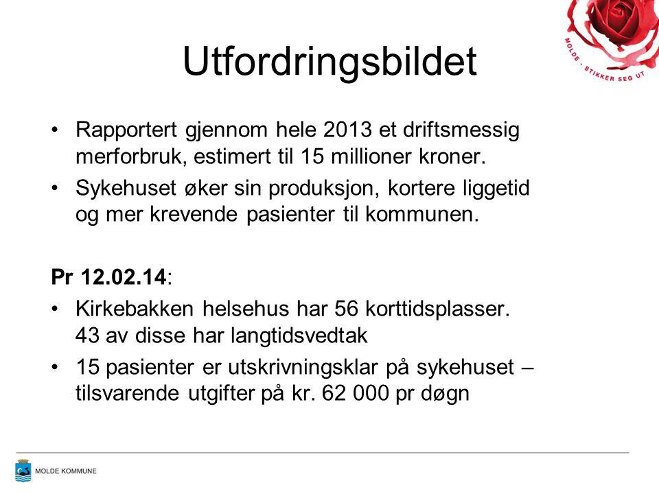 Utfordringsbildet Rapportert gjennom hele 2013 et driftsmessig merforbruk, estimert til 15 millioner kroner.
