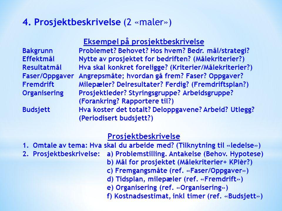 Eksempel på prosjektbeskrivelse