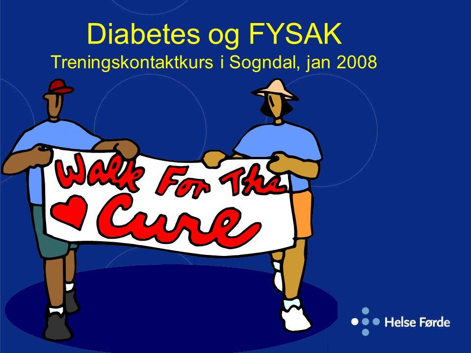 Diabetes og FYSAK Treningskontaktkurs i Sogndal, jan 2008