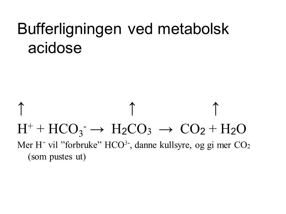Bufferligningen ved metabolsk acidose