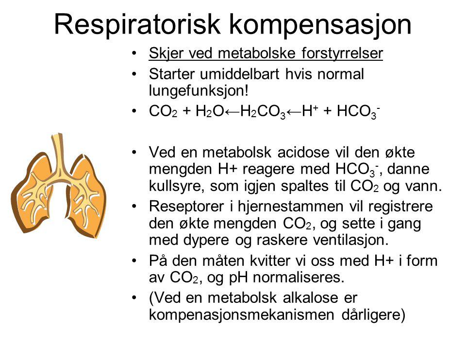 Respiratorisk kompensasjon