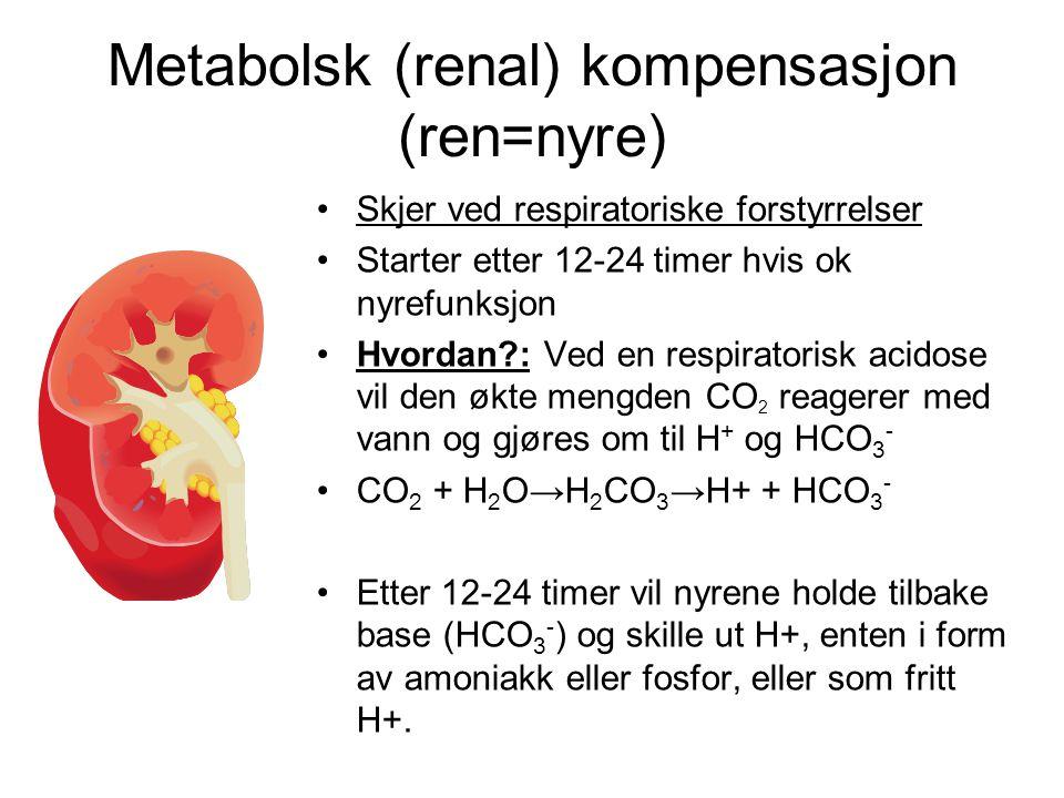 Metabolsk (renal) kompensasjon (ren=nyre)
