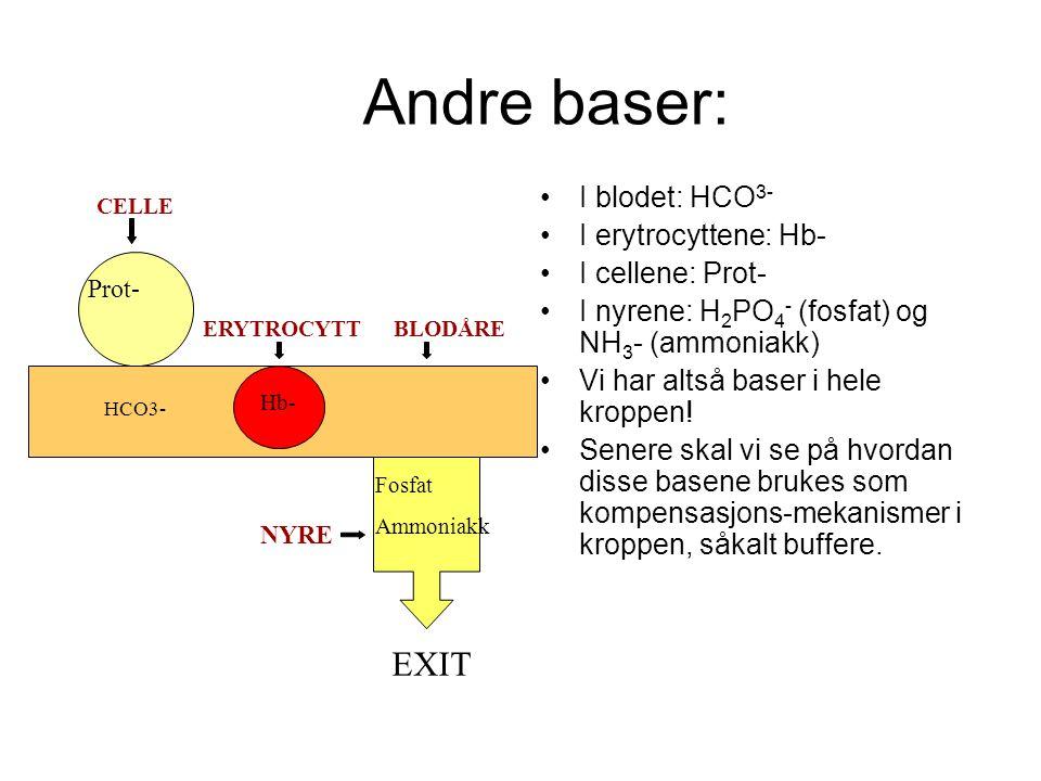 Andre baser: EXIT I blodet: HCO3- I erytrocyttene: Hb-