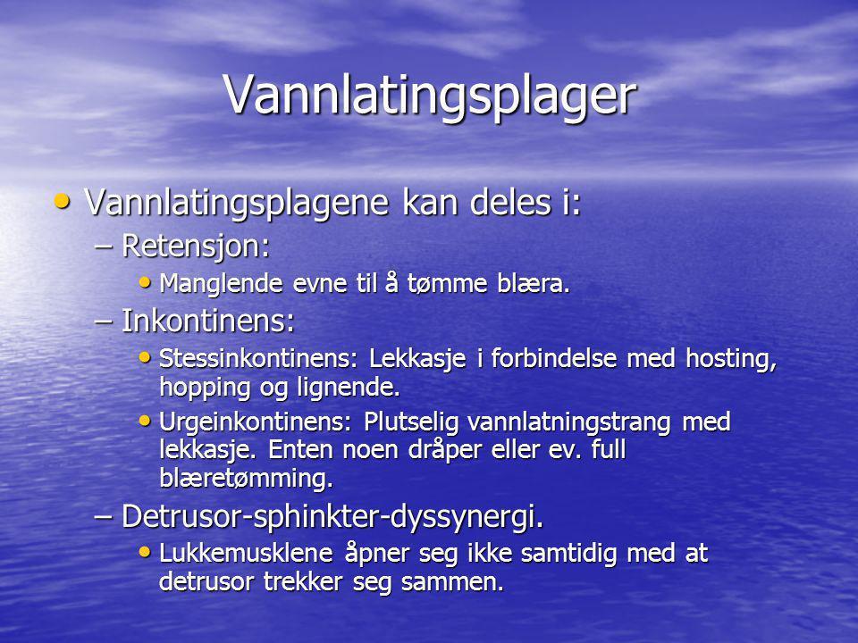 Vannlatingsplager Vannlatingsplagene kan deles i: Retensjon: