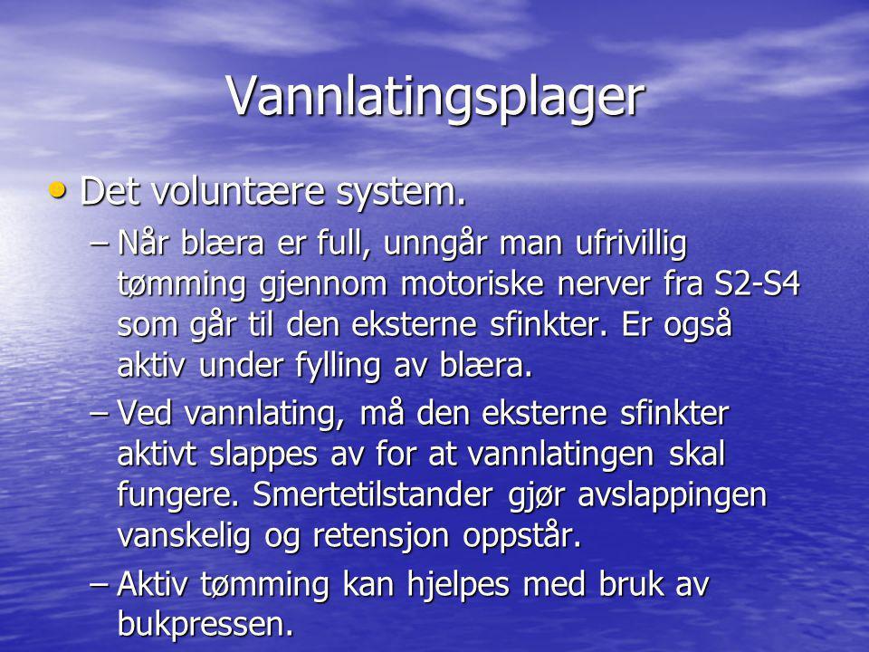 Vannlatingsplager Det voluntære system.