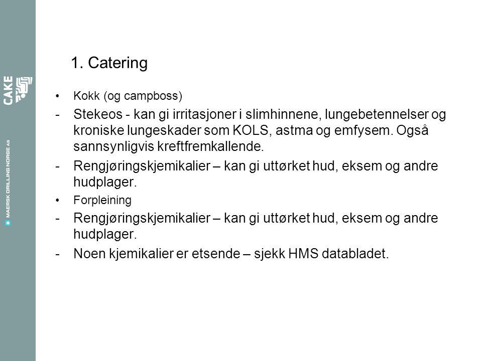 1. Catering Kokk (og campboss)