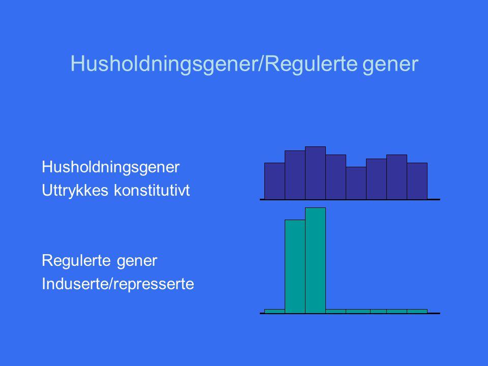 Husholdningsgener/Regulerte gener