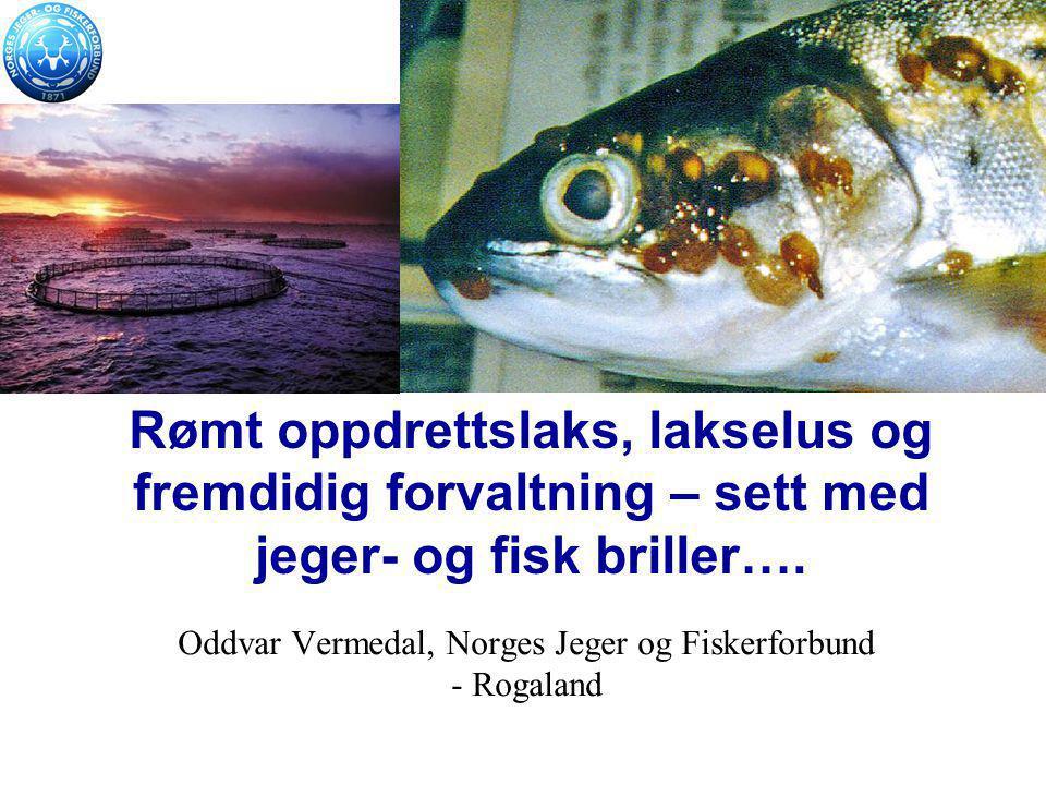 Oddvar Vermedal, Norges Jeger og Fiskerforbund - Rogaland