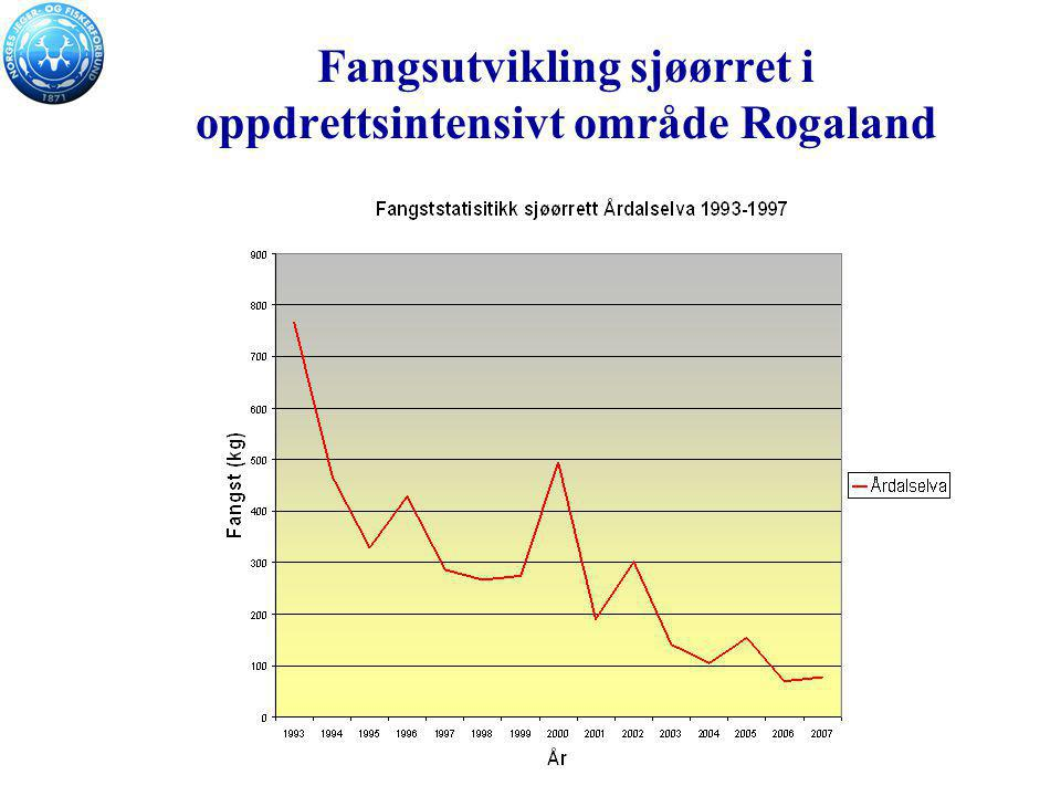 Fangsutvikling sjøørret i oppdrettsintensivt område Rogaland