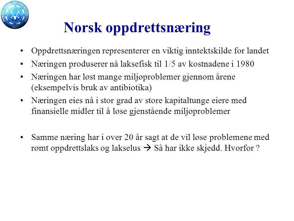 Norsk oppdrettsnæring