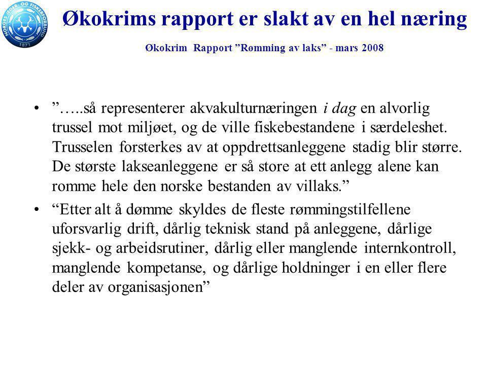 Økokrims rapport er slakt av en hel næring Økokrim Rapport Rømming av laks - mars 2008