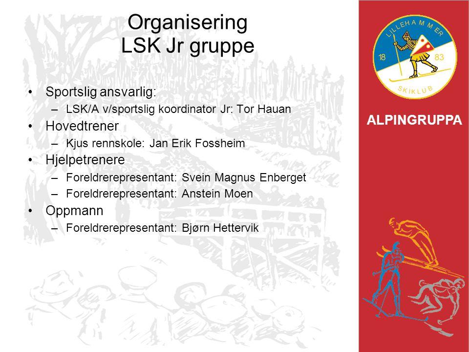 Organisering LSK Jr gruppe