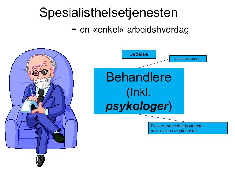 Spesialisthelsetjenesten - en «enkel» arbeidshverdag