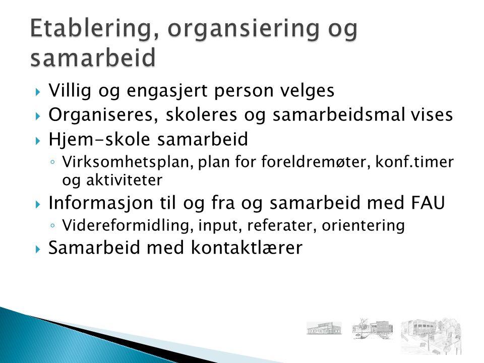 Etablering, organsiering og samarbeid