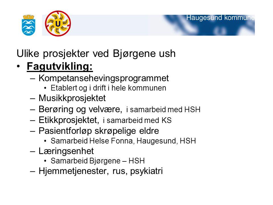 Ulike prosjekter ved Bjørgene ush Fagutvikling:
