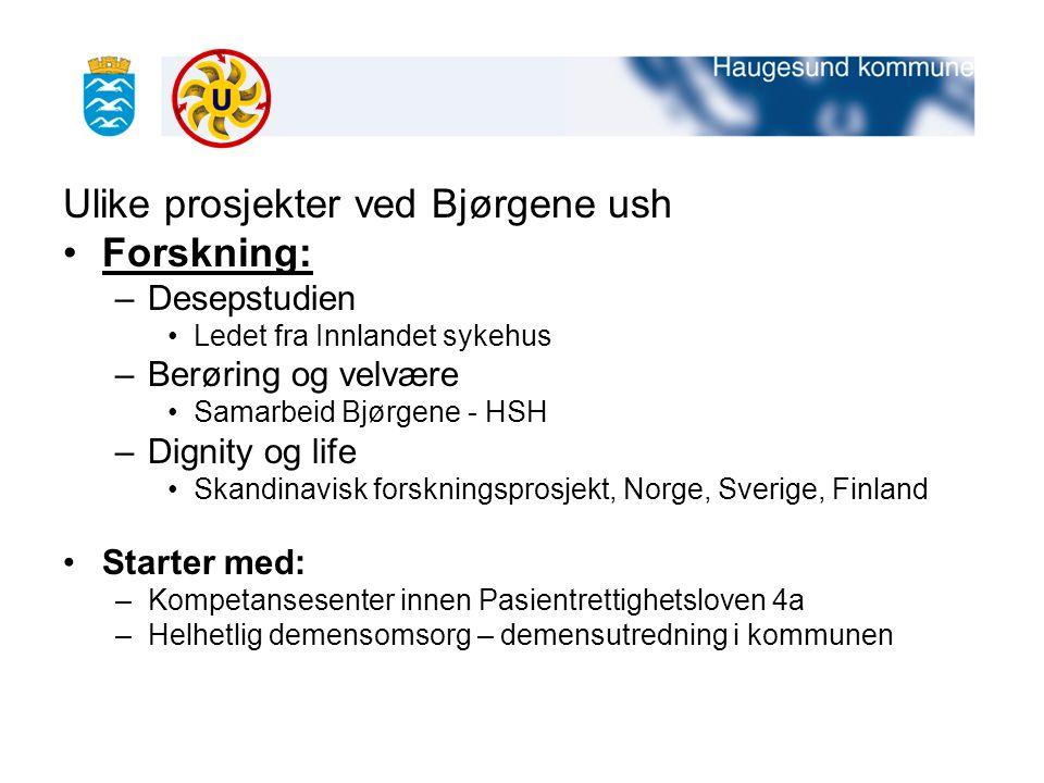 Ulike prosjekter ved Bjørgene ush Forskning: