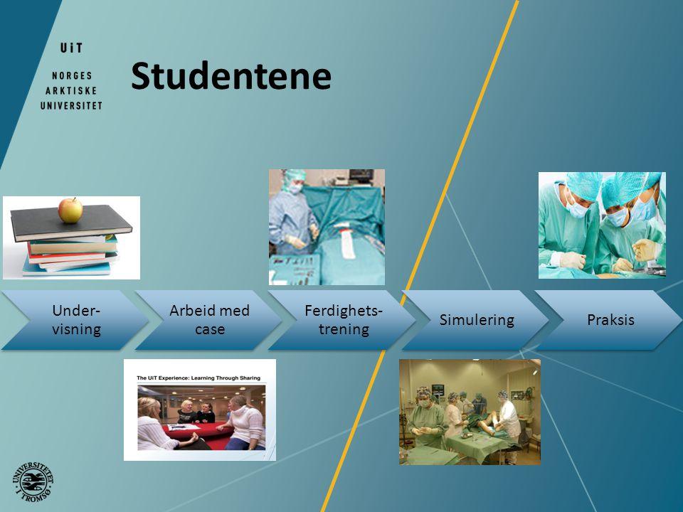 Studentene Under-visning Arbeid med case Ferdighets-trening Simulering