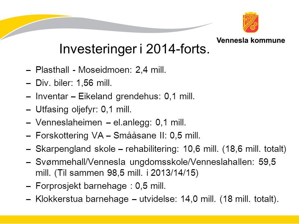 Investeringer i 2014-forts.