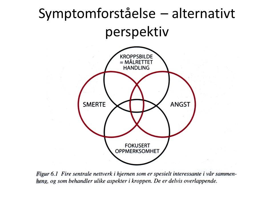 Symptomforståelse – alternativt perspektiv
