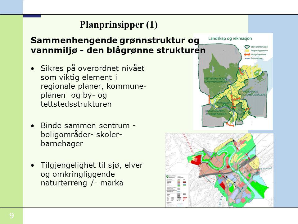 Sammenhengende grønnstruktur og vannmiljø - den blågrønne strukturen