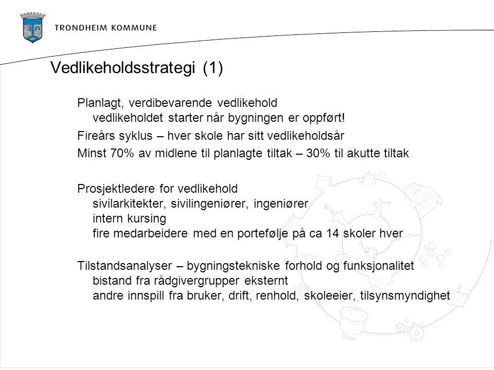 Vedlikeholdsstrategi (1)