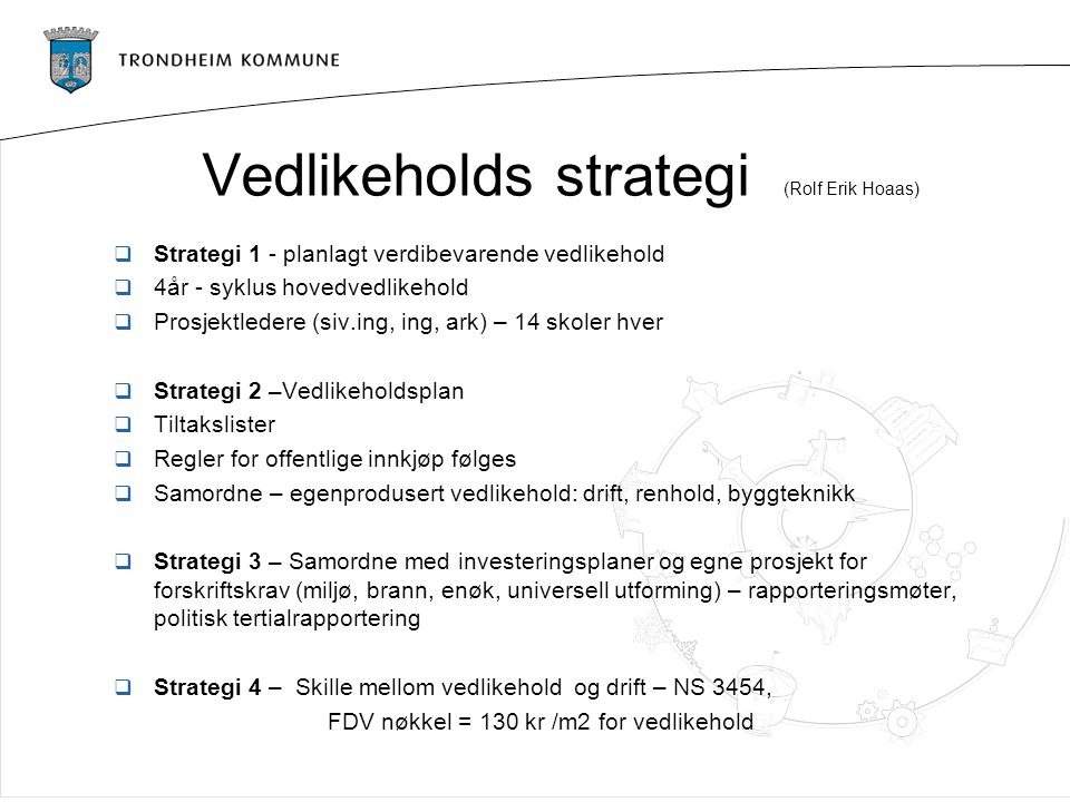 Vedlikeholds strategi (Rolf Erik Hoaas)
