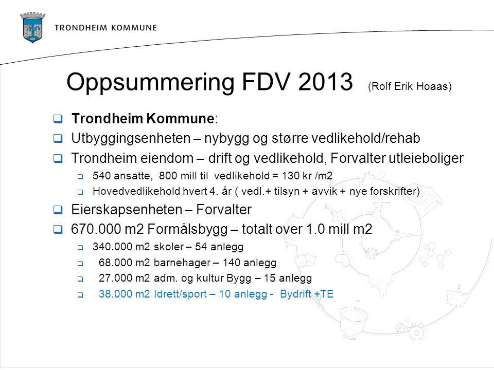 Oppsummering FDV 2013 (Rolf Erik Hoaas)