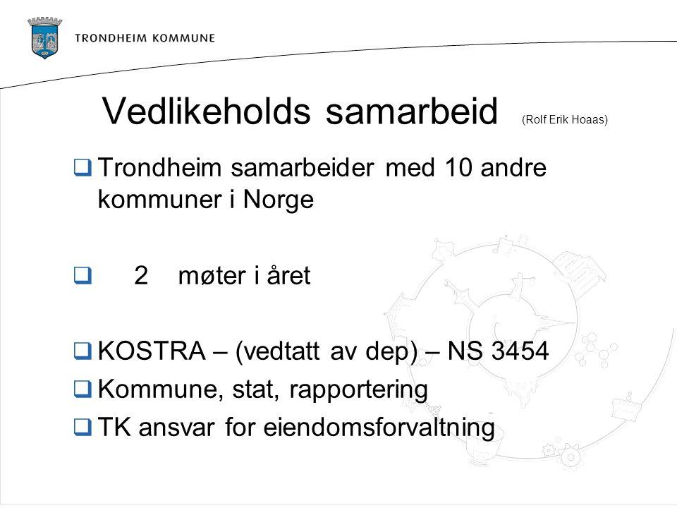 Vedlikeholds samarbeid (Rolf Erik Hoaas)