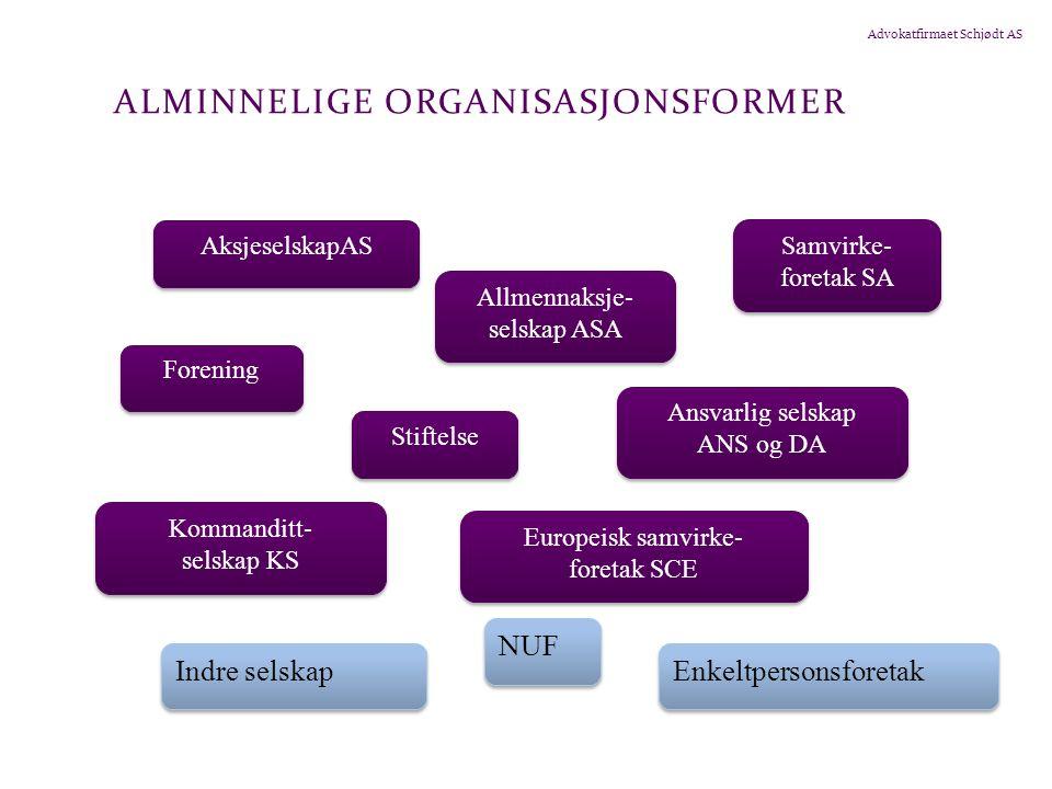 Alminnelige organisasjonsformer