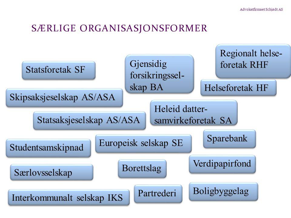 Særlige organisasjonsformer