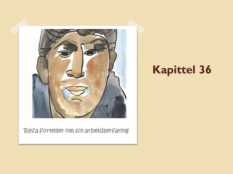 Kapittel 36 Reza forteller om sin arbeidserfaring