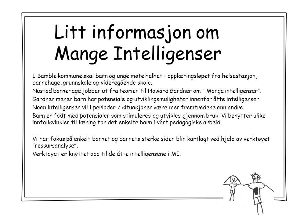 Litt informasjon om Mange Intelligenser