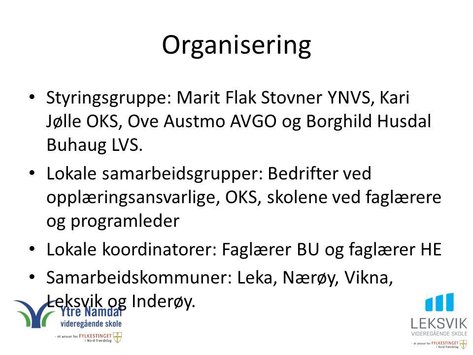 Organisering Styringsgruppe: Marit Flak Stovner YNVS, Kari Jølle OKS, Ove Austmo AVGO og Borghild Husdal Buhaug LVS.