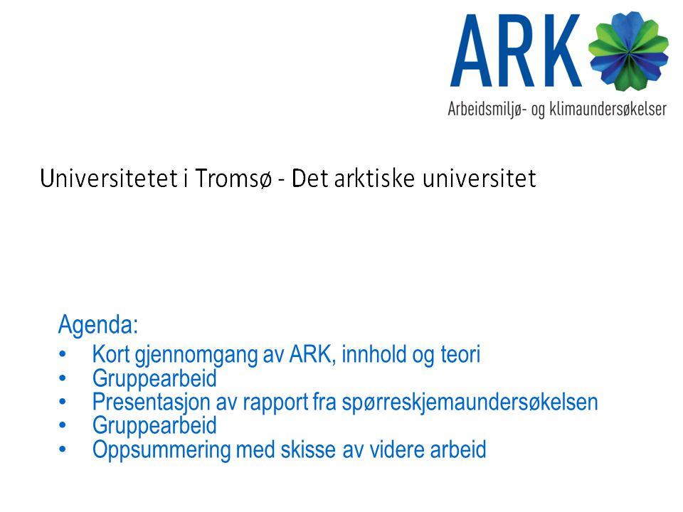 Agenda: Kort gjennomgang av ARK, innhold og teori Gruppearbeid