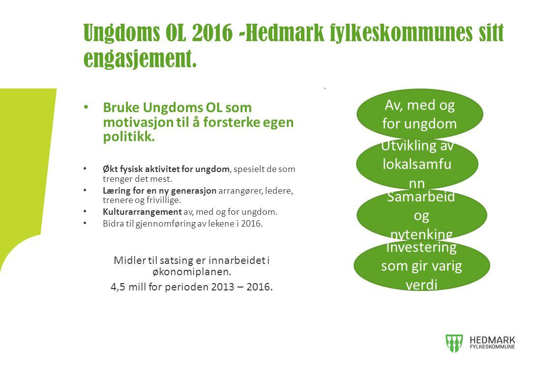 Ungdoms OL 2016 -Hedmark fylkeskommunes sitt engasjement.