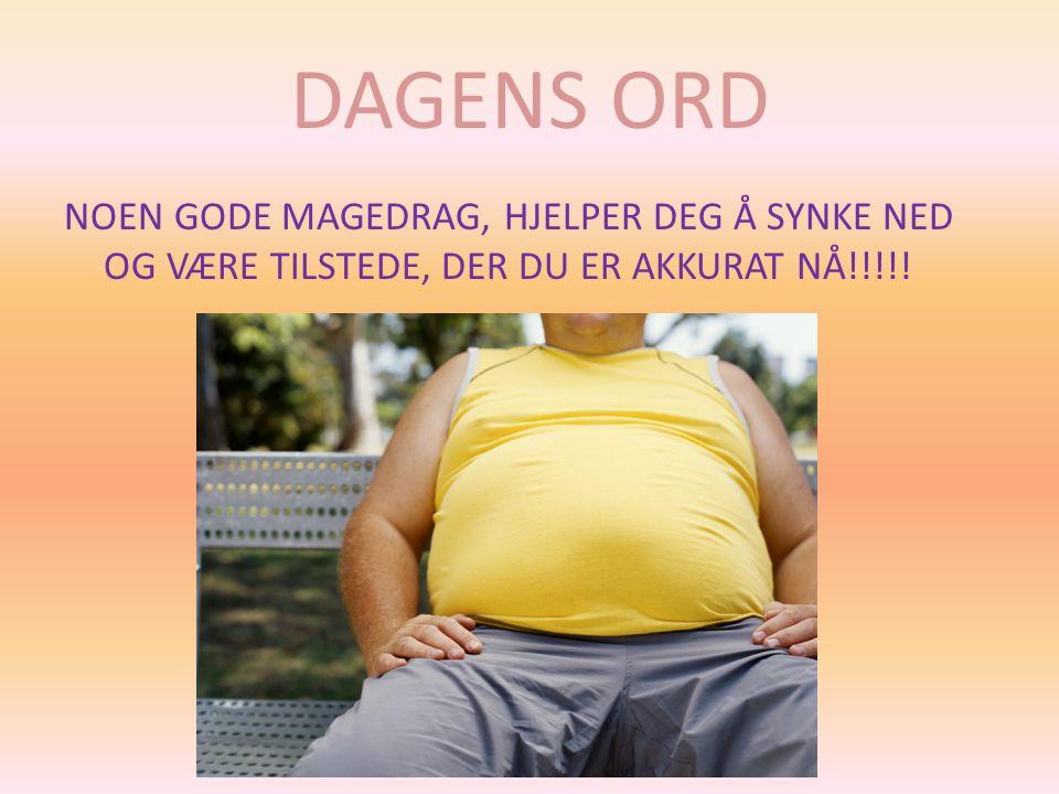DAGENS ORD NOEN GODE MAGEDRAG, HJELPER DEG Å SYNKE NED OG VÆRE TILSTEDE, DER DU ER AKKURAT NÅ!!!!!