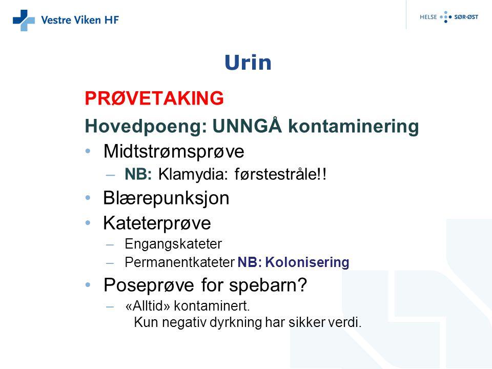 Urin PRØVETAKING Hovedpoeng: UNNGÅ kontaminering Midtstrømsprøve
