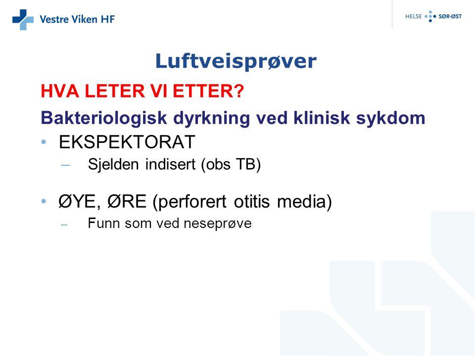 Luftveisprøver HVA LETER VI ETTER
