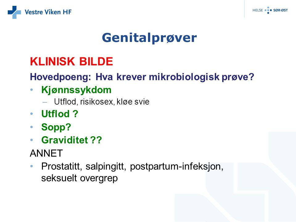 Genitalprøver KLINISK BILDE