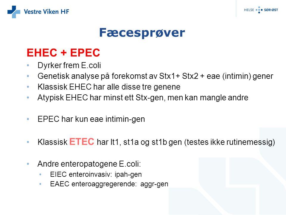 Fæcesprøver EHEC + EPEC Dyrker frem E.coli
