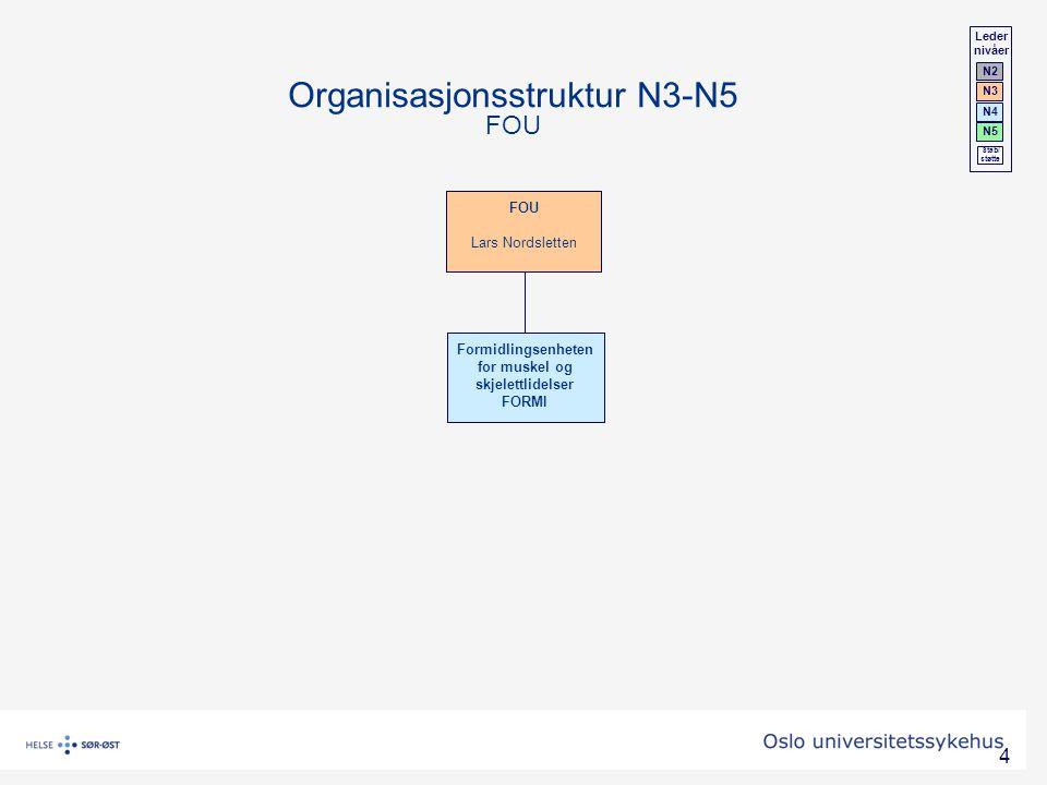 Organisasjonsstruktur N3-N5 FOU