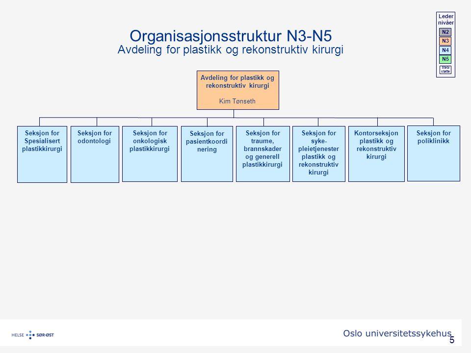 Leder nivåer. N2. N3. N4. N5. Stab/ støtte. Organisasjonsstruktur N3-N5 Avdeling for plastikk og rekonstruktiv kirurgi.