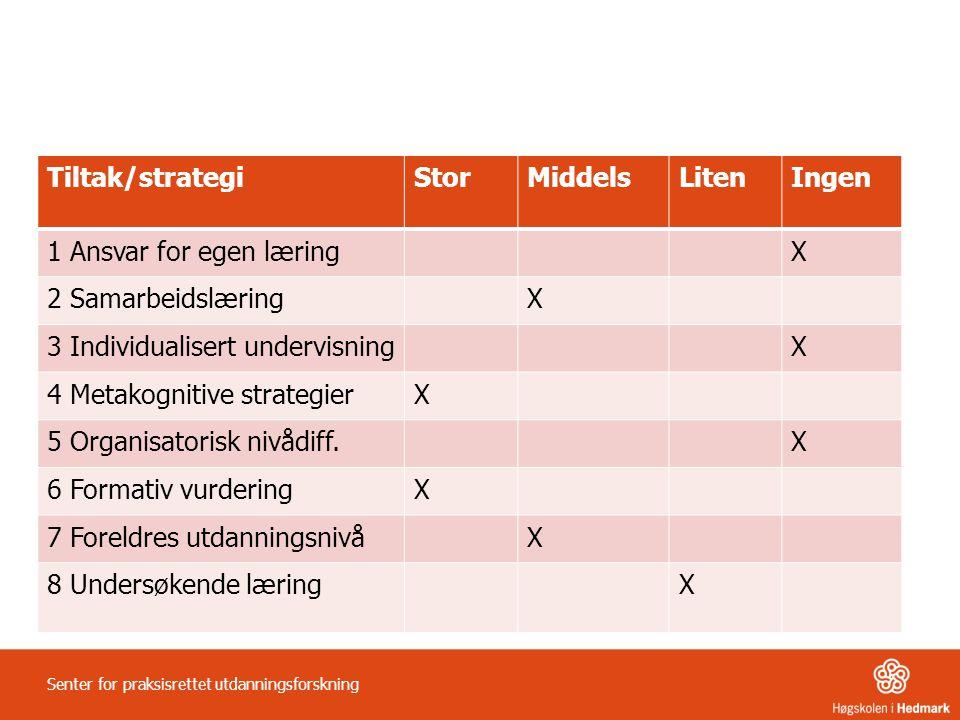3 Individualisert undervisning 4 Metakognitive strategier