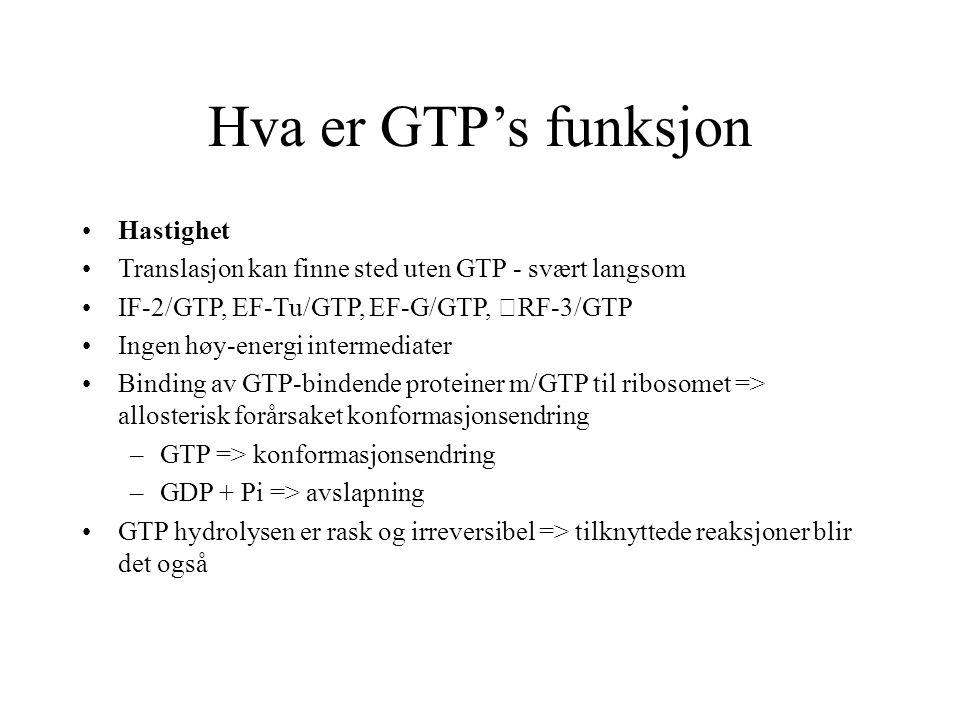 Hva er GTP's funksjon Hastighet