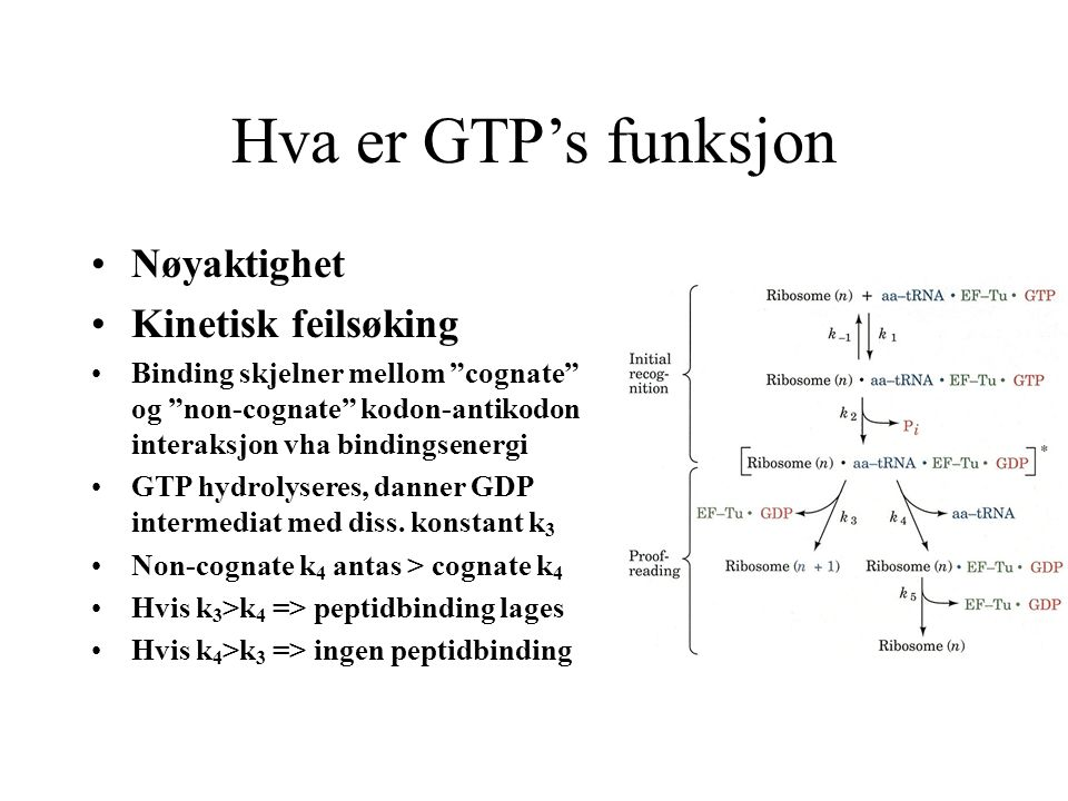 Hva er GTP's funksjon Nøyaktighet Kinetisk feilsøking